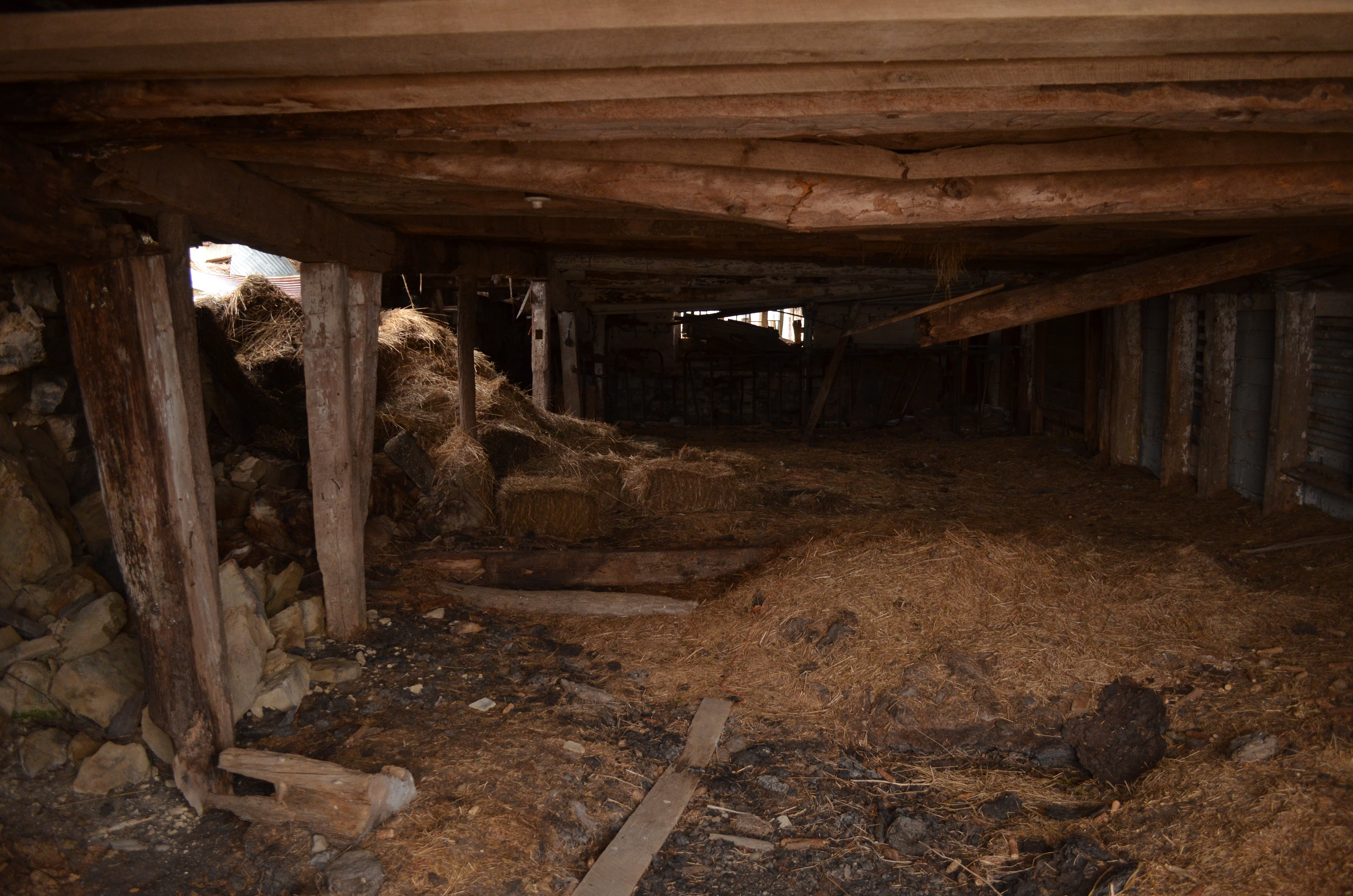 Inside Of A Barn : The decrepit barn pig year